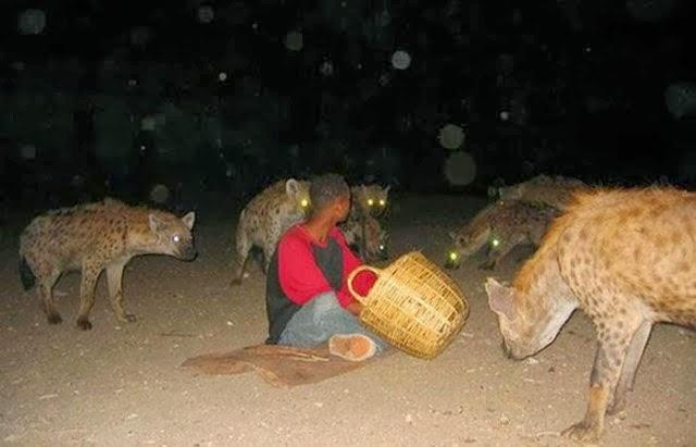 hienas rodeando persona