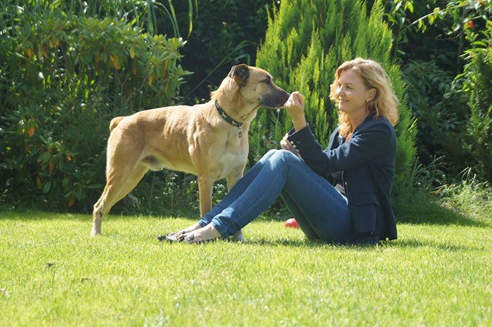 aeromoza alemana con perro de la calle adoptado