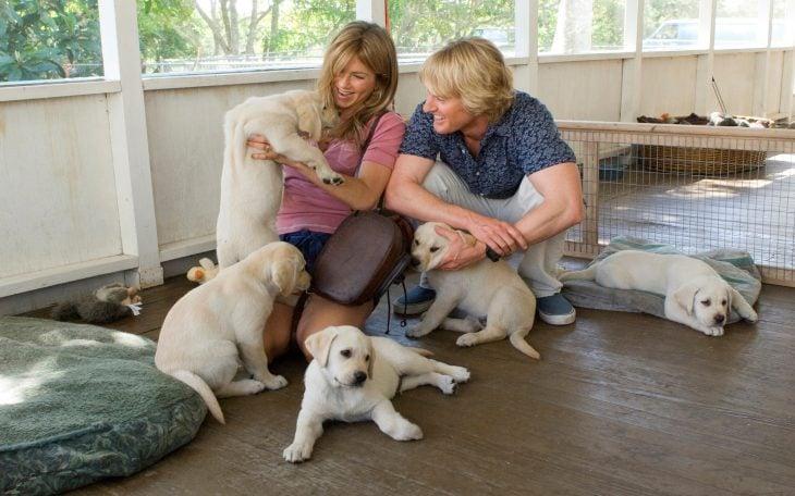 Jennifer Aniston y Owen Wilson en la película marley y yo, eligiendo un cachorro