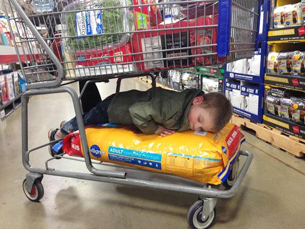Niño durmiendo sobre las croquetas en el carrito del supermercado