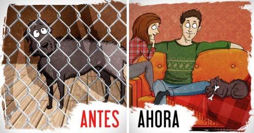 Ilustrador dibuja los hechos reales de su experiencia adoptando a un perro en un refugio animal y es lo mas enternecedor que verás hoy