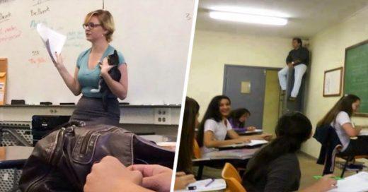 Imágenes que demuestran que ser profesor no tiene porque ser sinónimo de aburrido