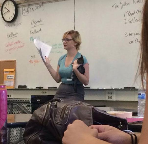 Maestra dando clases con un gato en la mano.