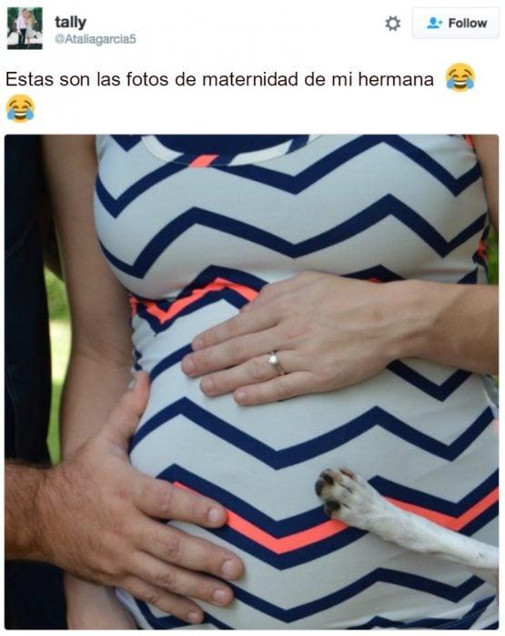 captura de pantalla de twitter vientre de embarazada y pata de perro