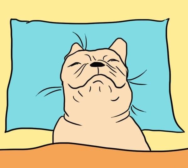 ilustración de perro durmiedo