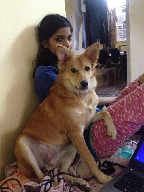 Joven hindú con su perro