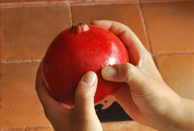 manos sosteniendo una granada