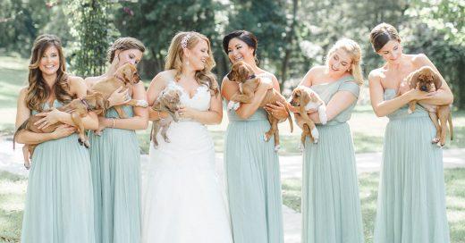 Estas chicas eligieron a unos cachorros en vez de las flores para la sesión de fotos de boda