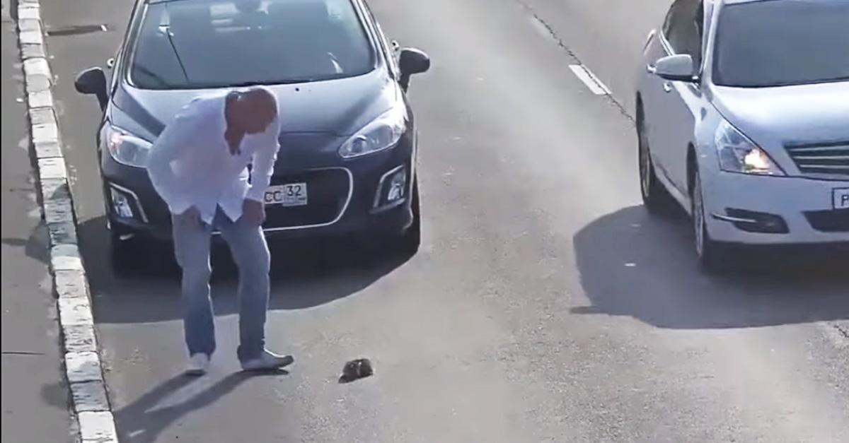 Este hombre arriesga su vida por salvar a un indefenso gatito y se convierte en el héroe del año