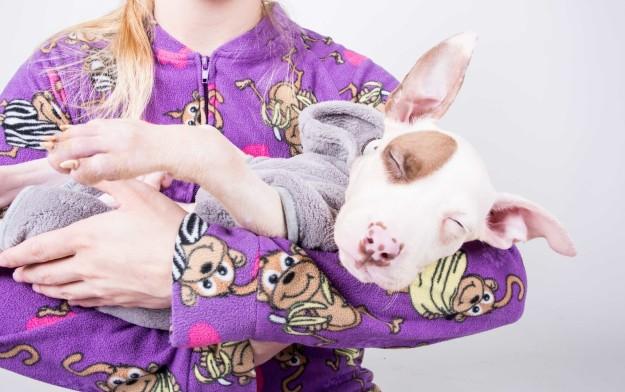Chica sosteniendo a un perro dormido mientras ambos usan una pijama