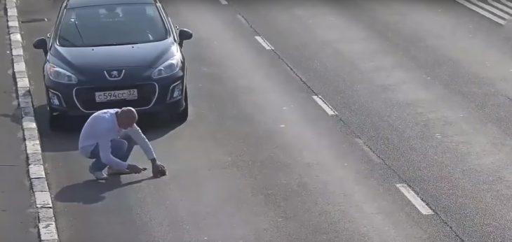 Hombre rescatando a un gatito en la carretera