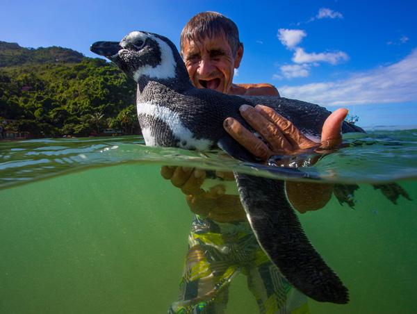 hombre con pinguino en el agua