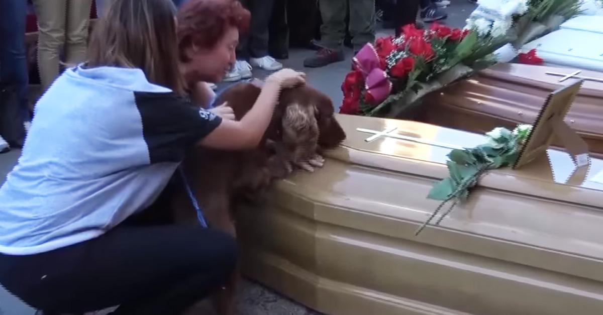 Perro se despide de su dueño fallecido en terremoto en Italia