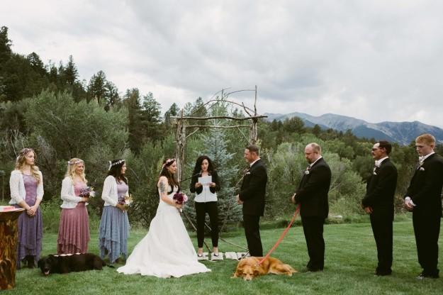 Fotos del enlace con los perros como invitados.