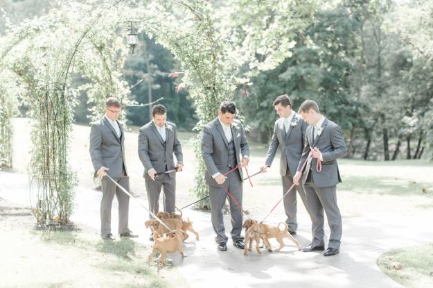 Los acompañantes del novio pasando tiempo con los cachorritos.