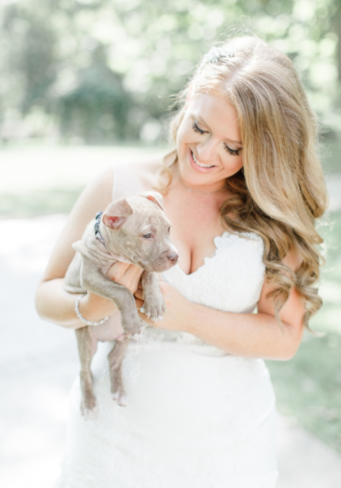The bride holding a pit bull.