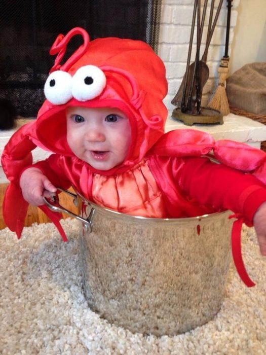 bebé disfrazado de langosta