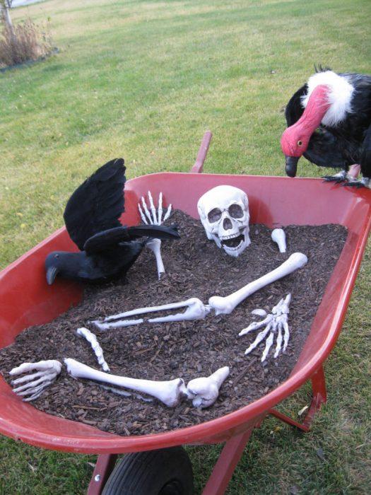 carretilla con tierra, esqueleto y buitres