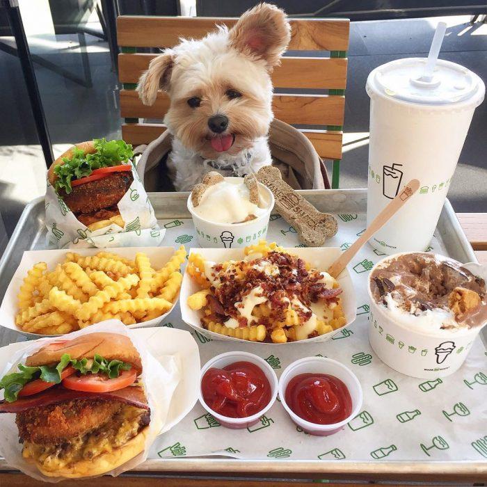 Popeye comiendo comida rápida