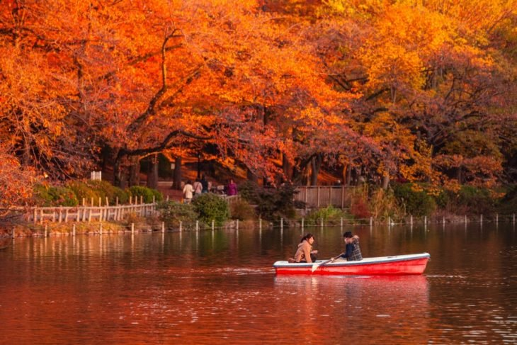 Couple taking a boat ride.