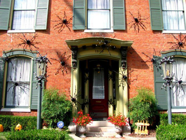 casa con ventanas y arañas