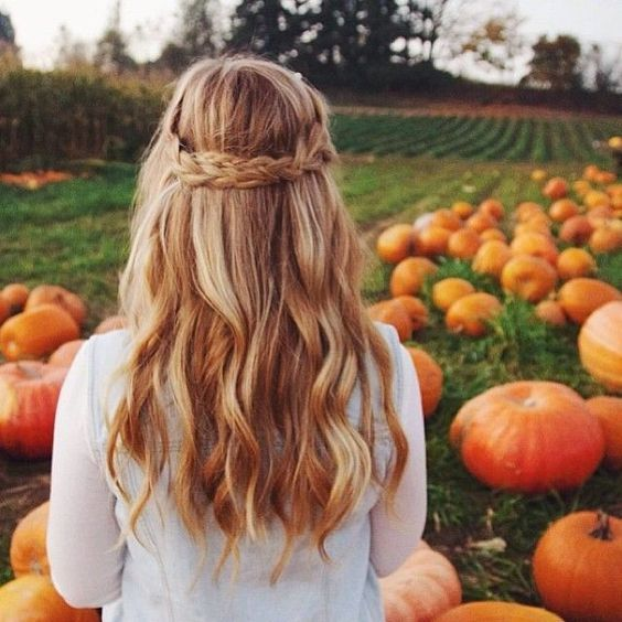 Peinado doble trenza en la parte de atrás.