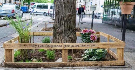 En París cualquier persona puede tener un huerto en cualquier parte de la ciudad