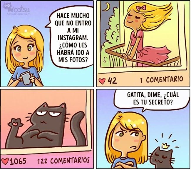 Cómic gato en casa es famoso en instagram