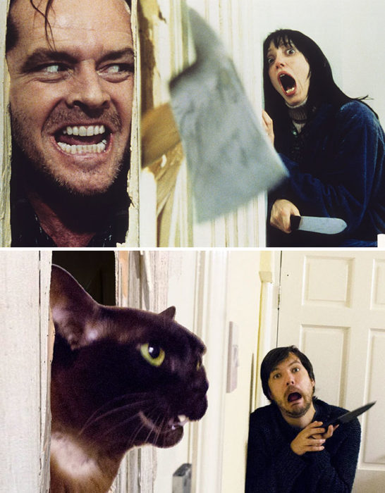 escena de The shining vs escena recreada por chico y su gato