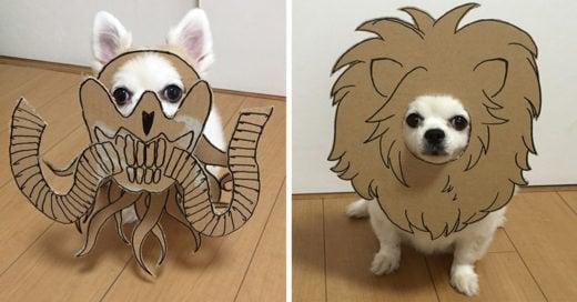 Esta chica japonesa crea mascaras para su perro y el resultado es genial