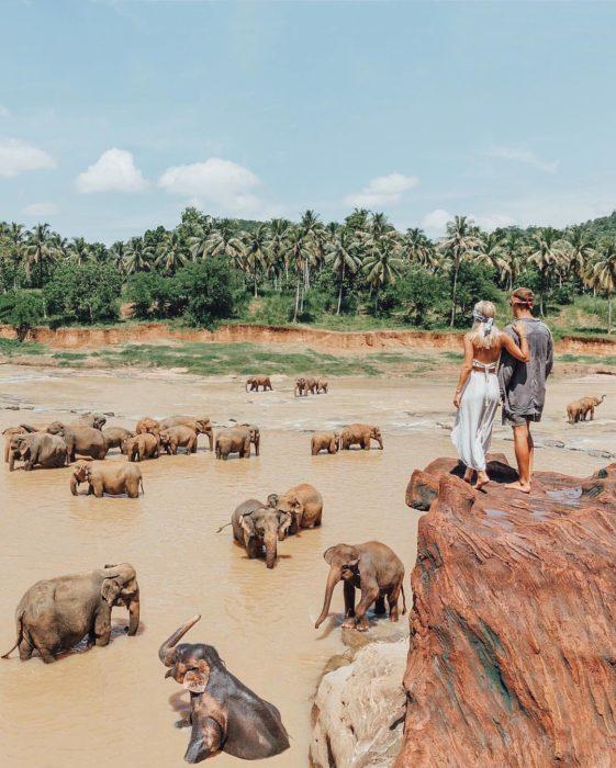 mujer en la selva con elefantes