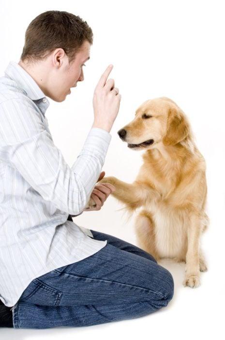 Hablar con el perro