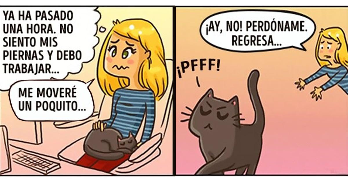 20 Ilustraciones que explican perfectamente cómo es tu vida cuando tienes un gato en casa