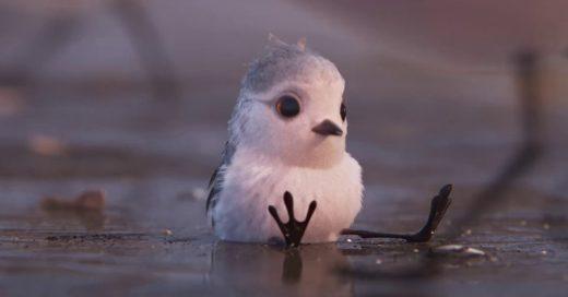 """Pixar lo hace de nuevo: esta vez con """"Piper"""", un ave que nos enseña a enfrentar nuestros miedos"""