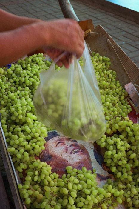 Sin uvas