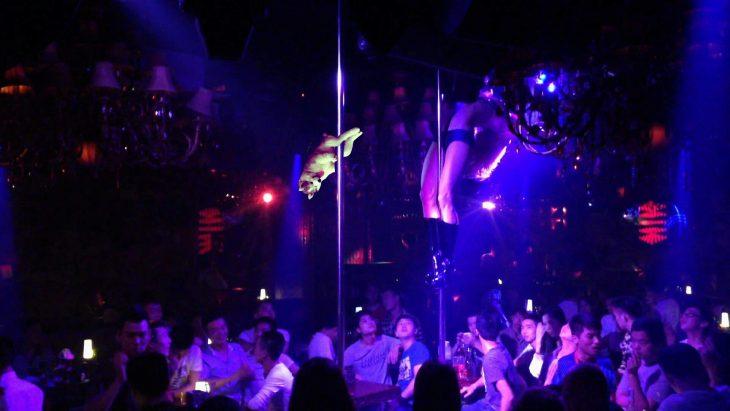 perro sobre un tubo en club nocturno