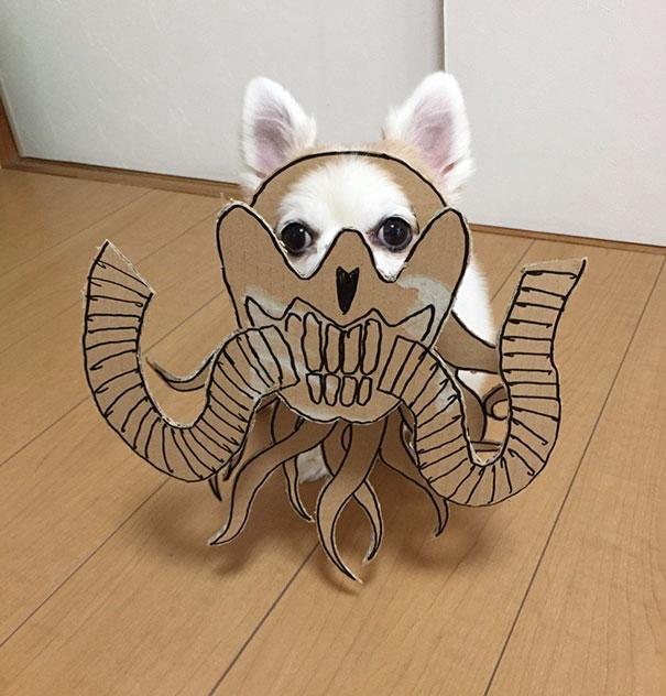 Perro chihuahua con una mascara de cartón en forma de mounstro