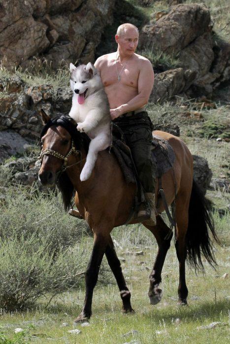 hombre sin camisa en caballo con perro