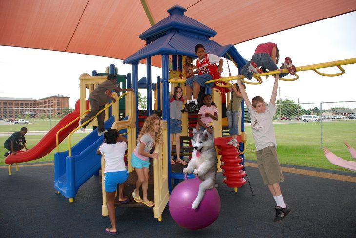 niños jugando en parque y perro