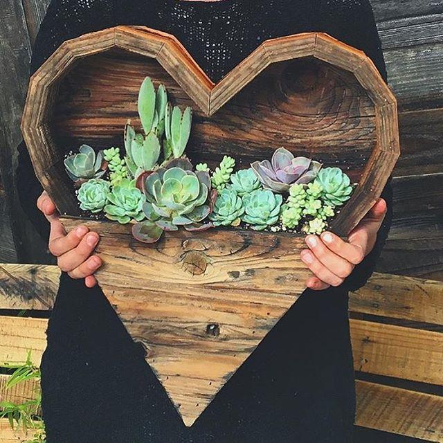 chica con plantas scculents