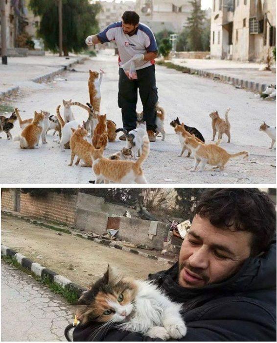hombre que salva gatos en alepo