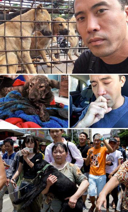 salva a perros del festival de la carne