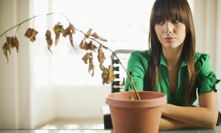 chica viendo su planta marchita
