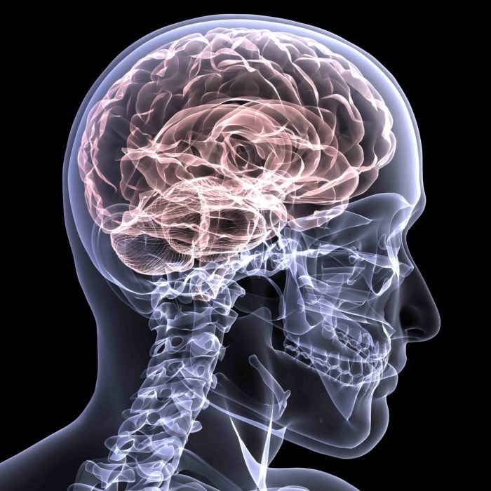 cerebro y luces