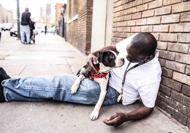Hombre mirando a su perro