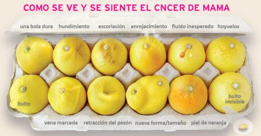 1 foto y 12 limones que pueden ayudarte a detectar el cáncer de mama