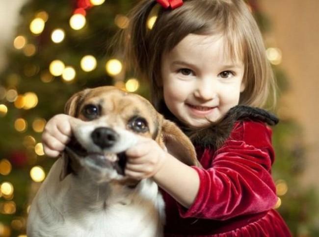 niña jugando con el perro