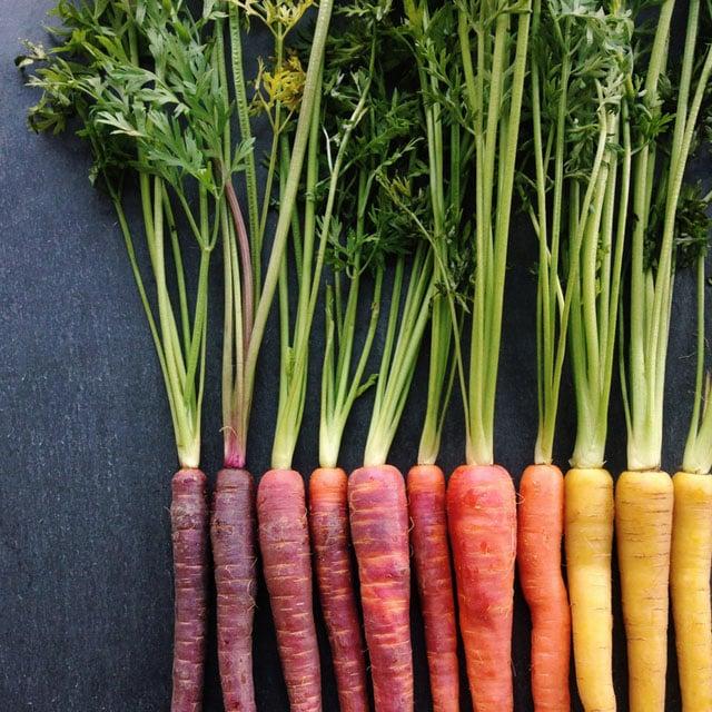 zanahorias por color