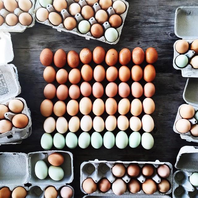 huevos ordenados por color