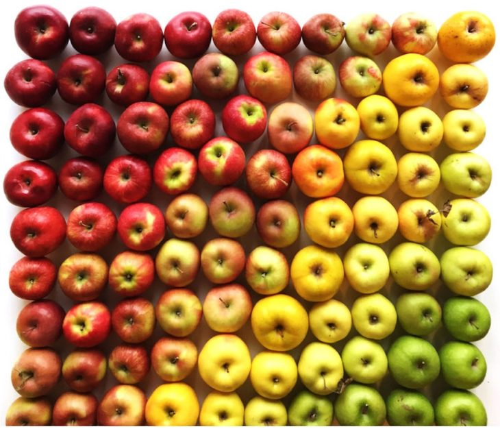 manzanas degradadas